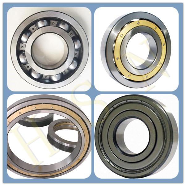 Spherical roller bearing1