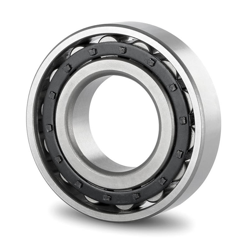 cylindrical roller bearing NU 1021